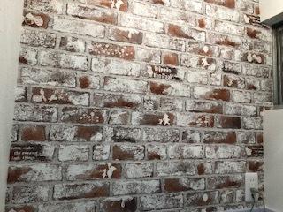 壁からきのこ続1